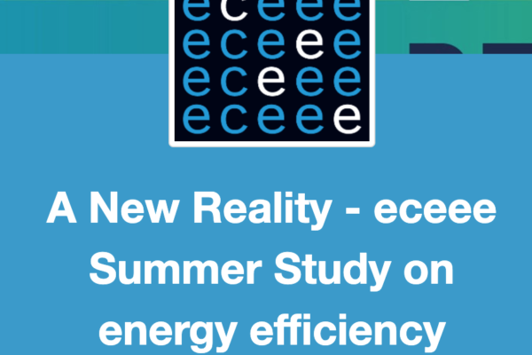 Presentation of newTRENDs at the ECEEE Summer Study
